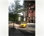 Downtown NYC - Battery Park City * Exquisite XXL 1 Bedroom Covertible 2 * Statue of Liberty & Water Views * 2 Walk in Closets * CYOF - $3450