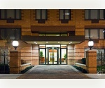 Harlem's Finest 3 Bed 2 Bath WON'T LAST!!! Great Amenities