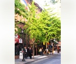 Beautiful Tree Lined Block. Midtown West. Renovated Studio. 2nd floor. Exposed Brick. Prime Location. Central Park. Times Sq.