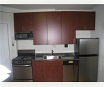 Newly Renovated One Bedroom with Gourmet Kitchen w/ Stainless Steel Appliances